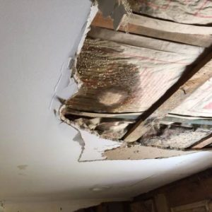 Water Damage Services Chelsea MA